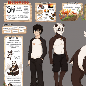 Shi Reference sheet